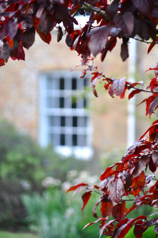 Snug_Window_The_Mill_House